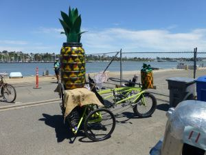 pineapple at mare island